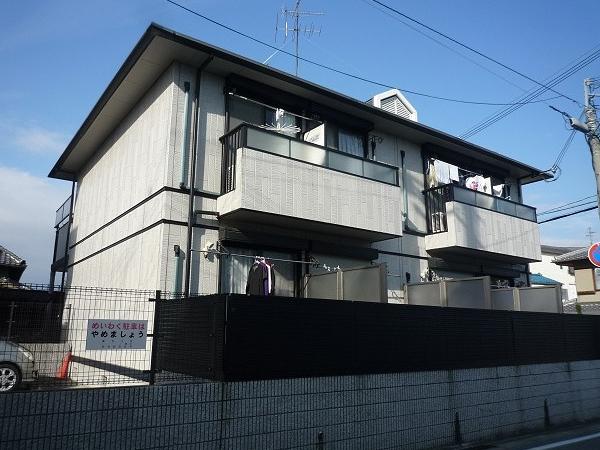 藤井寺駅から、徒歩圏内です♪ カンパニュラ